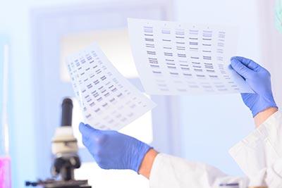 Analyzing DNA