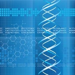 Gene mutation identified